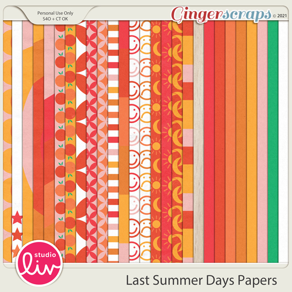Last Summer Days Papers preview
