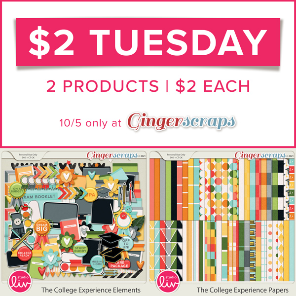 $2 Tuesday. 2 products | $2 each. 10/5 only at GingerScraps.