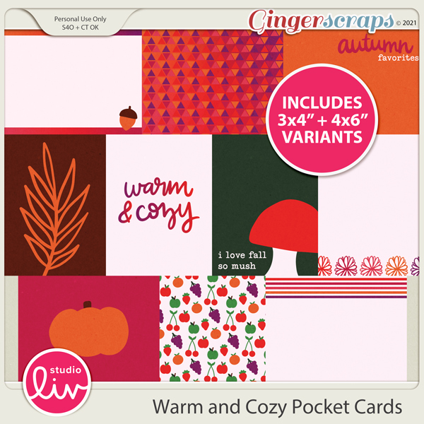 Warm and Cozy Pocket Cards preview